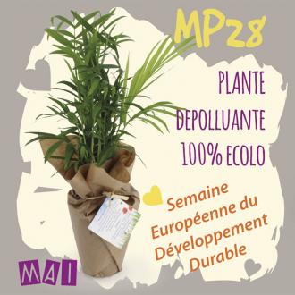 05MAI MP28