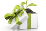 eco friendly gift 800x800 768x768