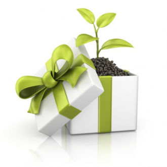 eco friendly gift 800x800 768x768