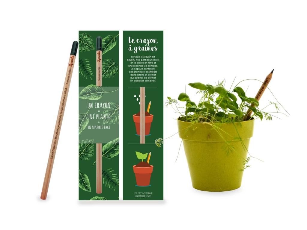 Comment Planter Le Basilic En Terre le crayon à graines - idées nature