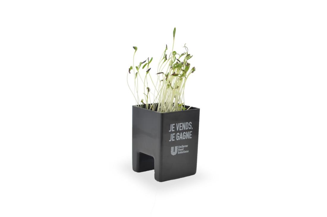 Le Pot Ordi Kit Graines - Idées Nature