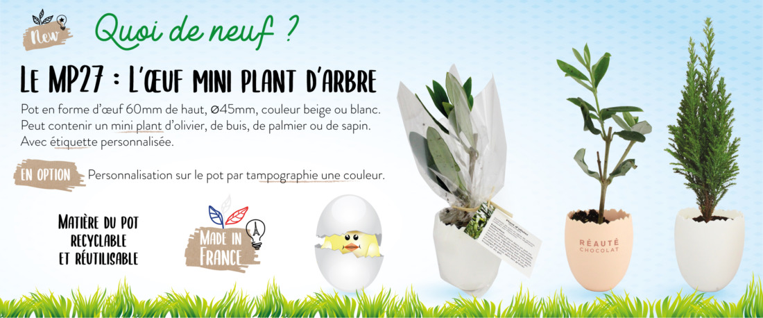 MP27—plant-oeuf_banner
