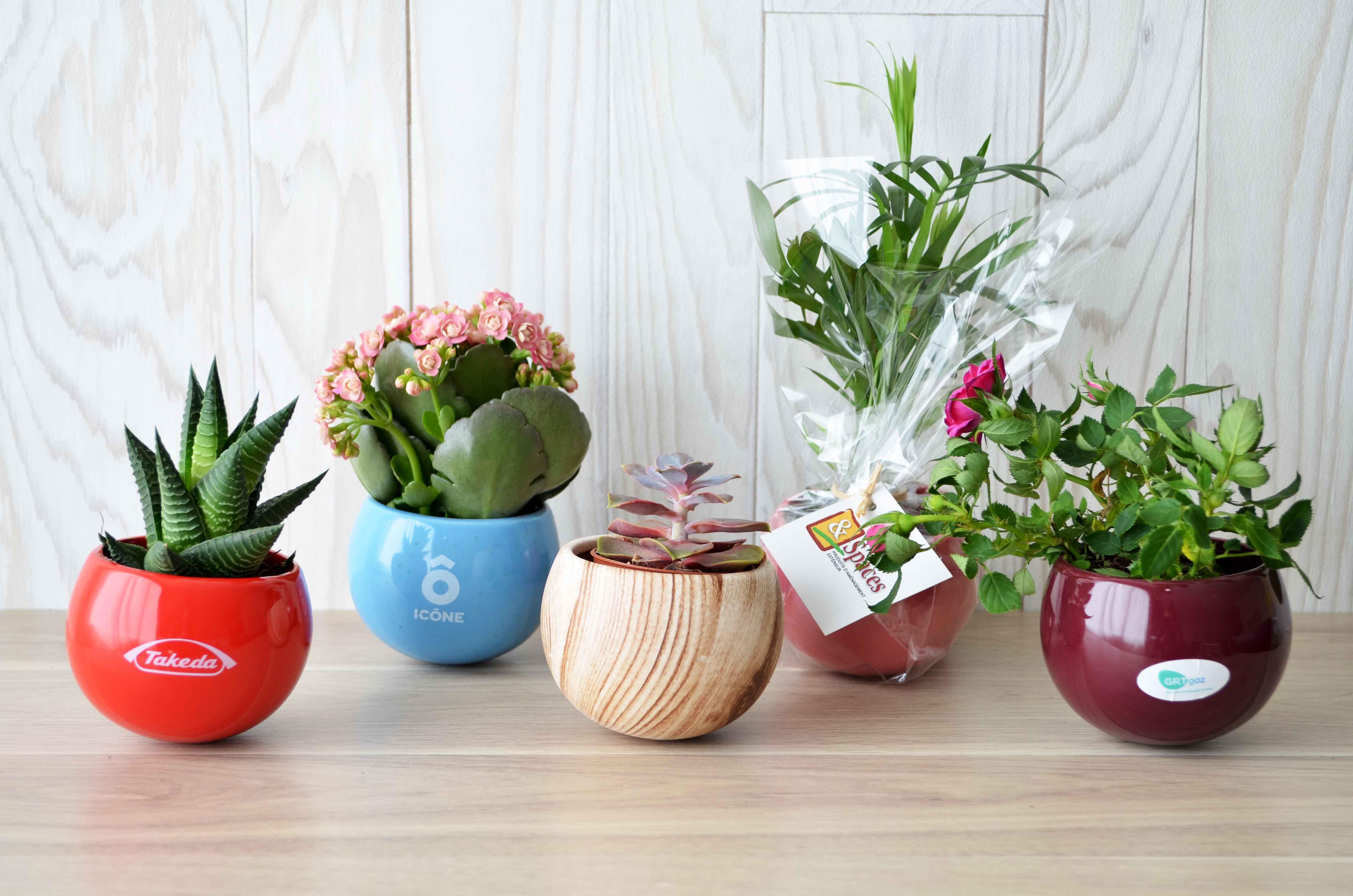 plaque aimante pour plantes lvitation en pot aimant en plastique flottant pot air bonsa blanc. Black Bedroom Furniture Sets. Home Design Ideas