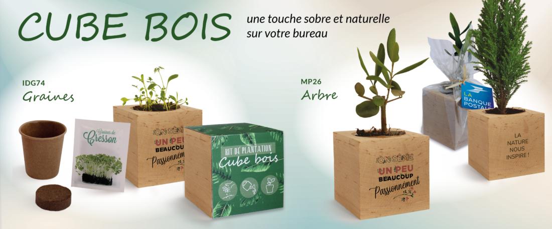 banner-cubes-bois-2500x1042px